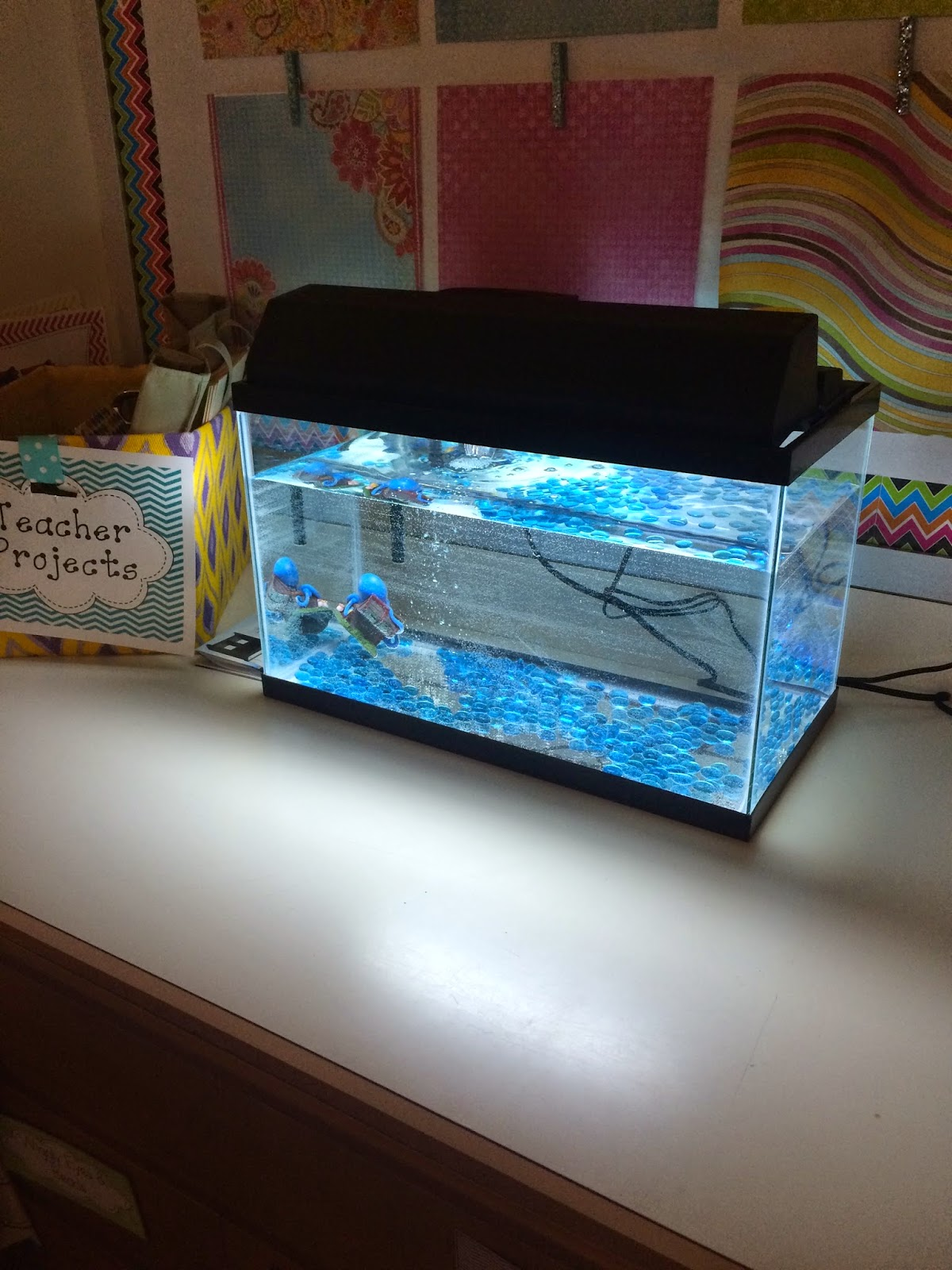 Pets In The Classroom For Classroom Management